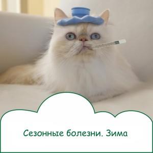 kszYTBaul10